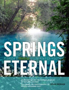 springs-eternal-web